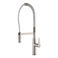 Pull Down Kitchen Faucets Reviews 1